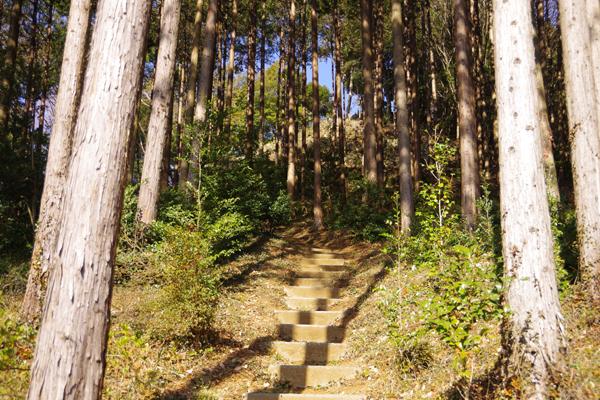 弘法山02
