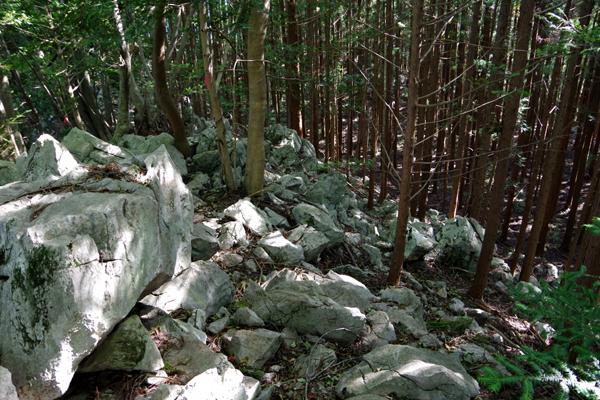 武川岳32