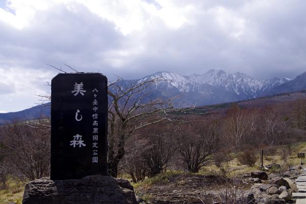 美し森山頂1