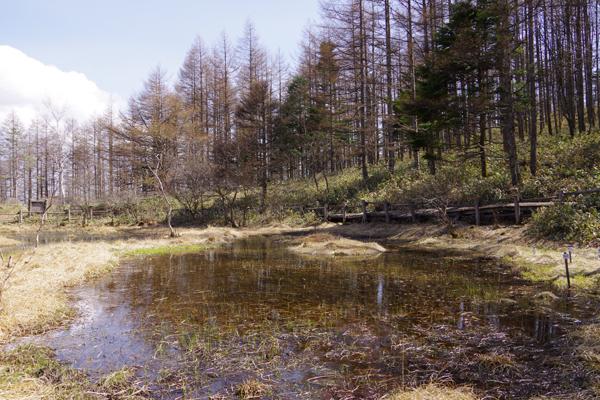 羽衣の池2