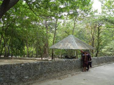 ヤンゴンの動物園2