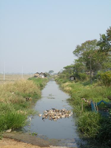 ニャウンシェの田園の川