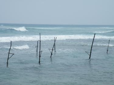 ゴールの海4