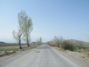 ボルビラップまでの道
