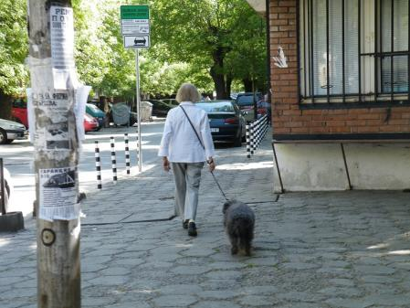 ブルガリア人と犬