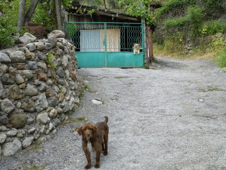 メルニック村