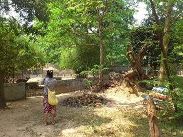 ヤンゴンの動物園の寂れ