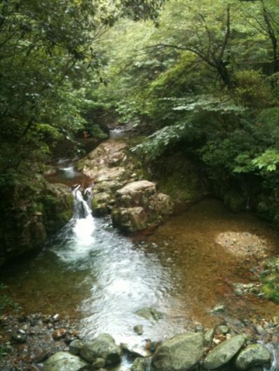 20120915_達磨祭_04