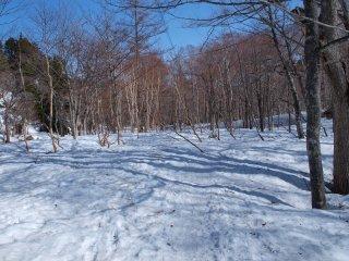 s04山ノ鼻への道3