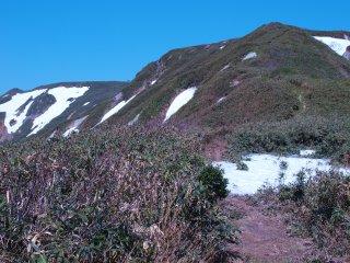 s05高松岳への道2