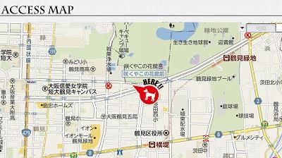 mapp0.jpg