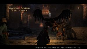 Dragons Dogma_ Dark Arisen Screen Shot _0501-16