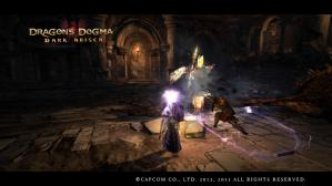 Dragons Dogma_ Dark Arisen Screen Shot _19