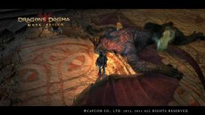 20130510_Dragons Dogma_ Dark Arisen Screen Shot _18