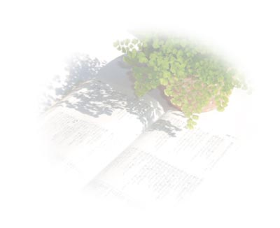 bible-plant.jpg