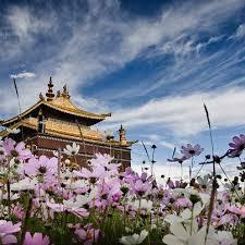 チベット index