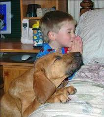 祈るimages
