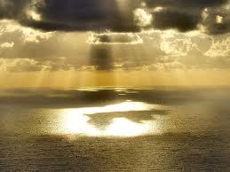 黄金の光images