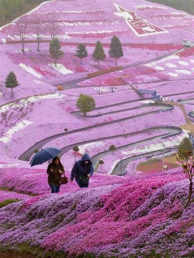 日本の風景wyspa hokkaido