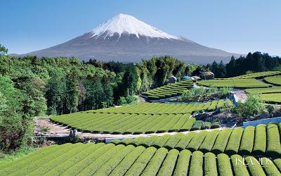 日本の風景japan