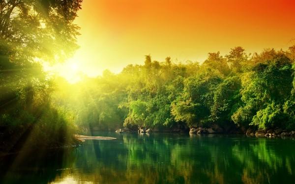 森と水のimage