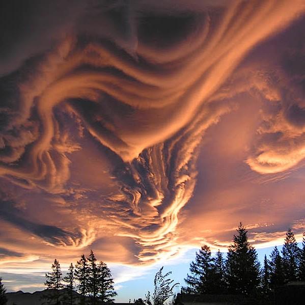 ニュータイプの雲補足image