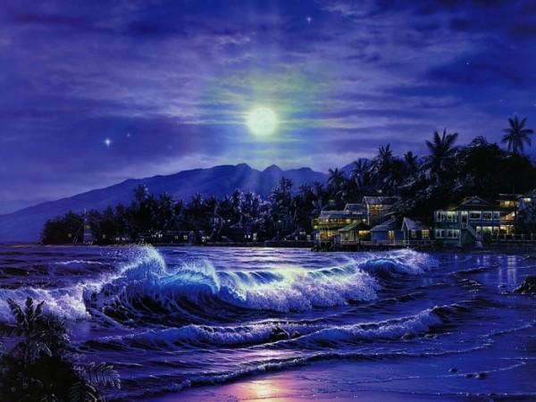 夜の浜辺image