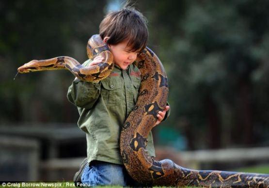 少年と蛇image