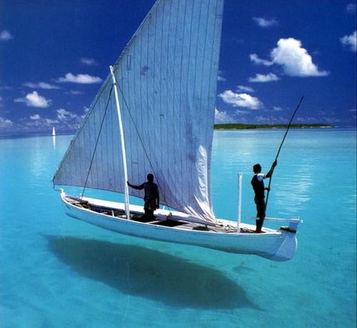 透明な水の上のimage