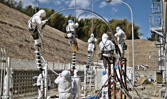 福島で働く人たち2image