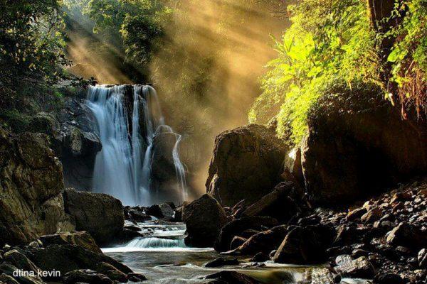 秋の滝と自然の風景image