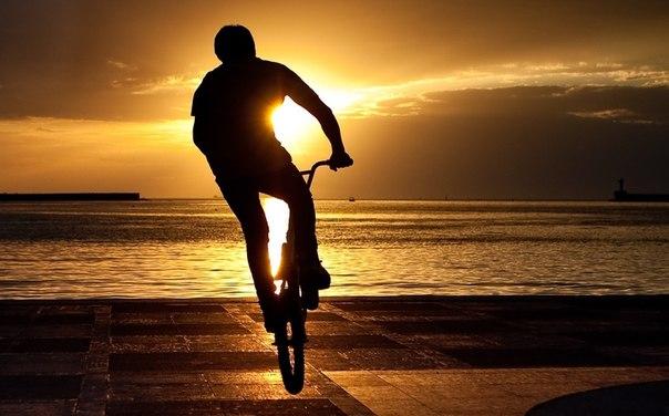 ひとり自転車でimage