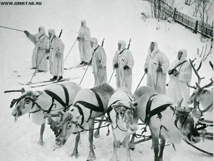 フィンランドの兵士とトナカイimage