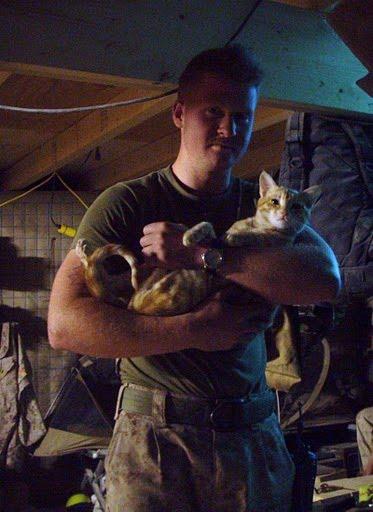 兵士と猫image