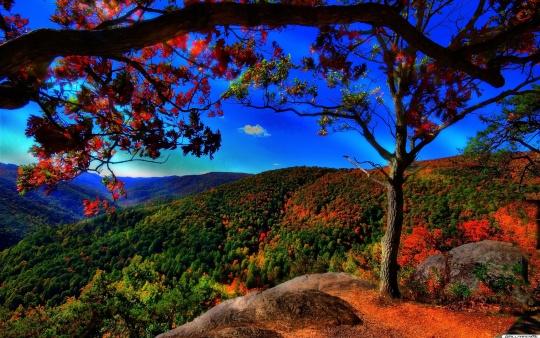 秋の青い空とimage