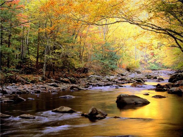 秋の気配のimage