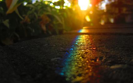 道に映る虹色のimage