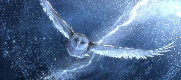 フクロウの冒険のimage