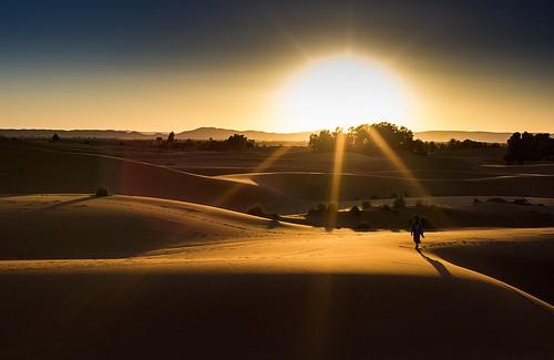 サハラの太陽のimage