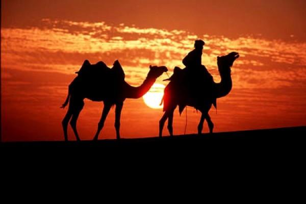 砂漠の情景のimage