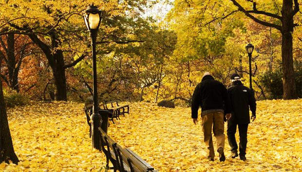 とある秋の日のimage