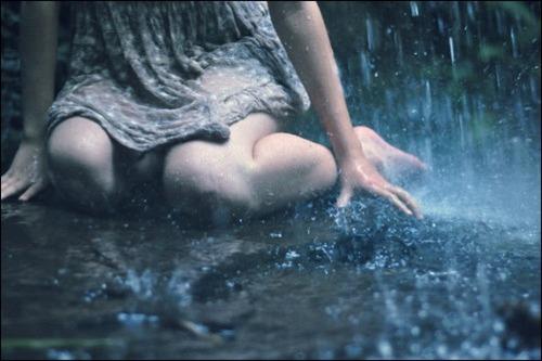 涙の雨のimage