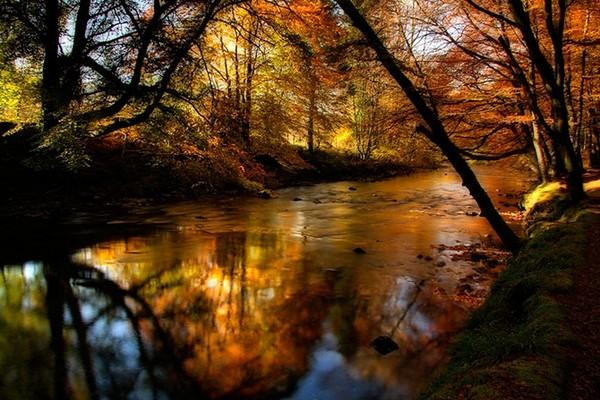 秋のひとこまなimage