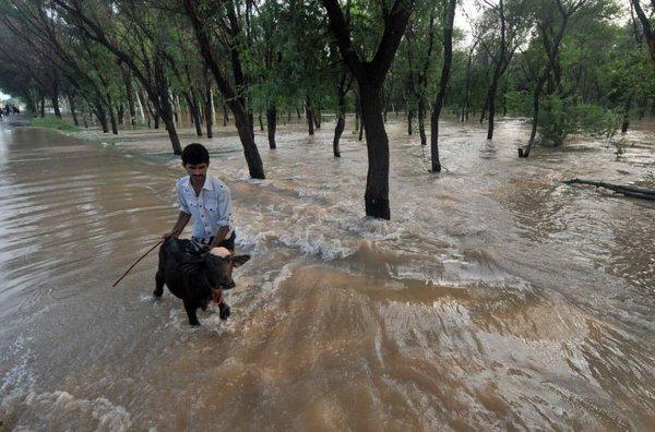 洪水の(パキスタン)image