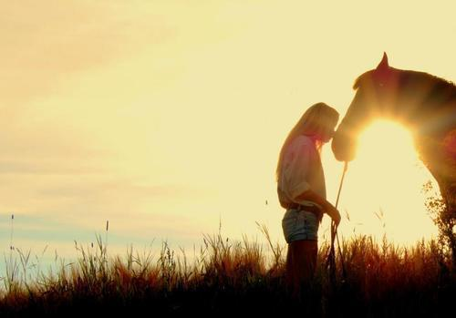 とある女の子と馬image