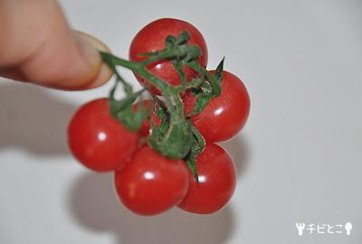 なかよしトマト。。