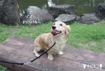 りっくんと公園で。。(=^△^=)
