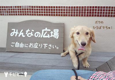 りっくんでちゅ!(=^△^=)