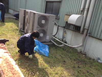 SOTOMAWARI320130429.jpg