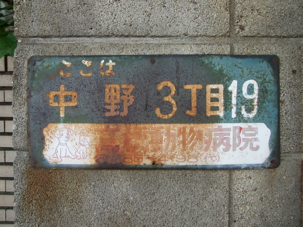 20130428006.jpg